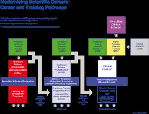 MSC Career & Training Pathway - Sep 2013