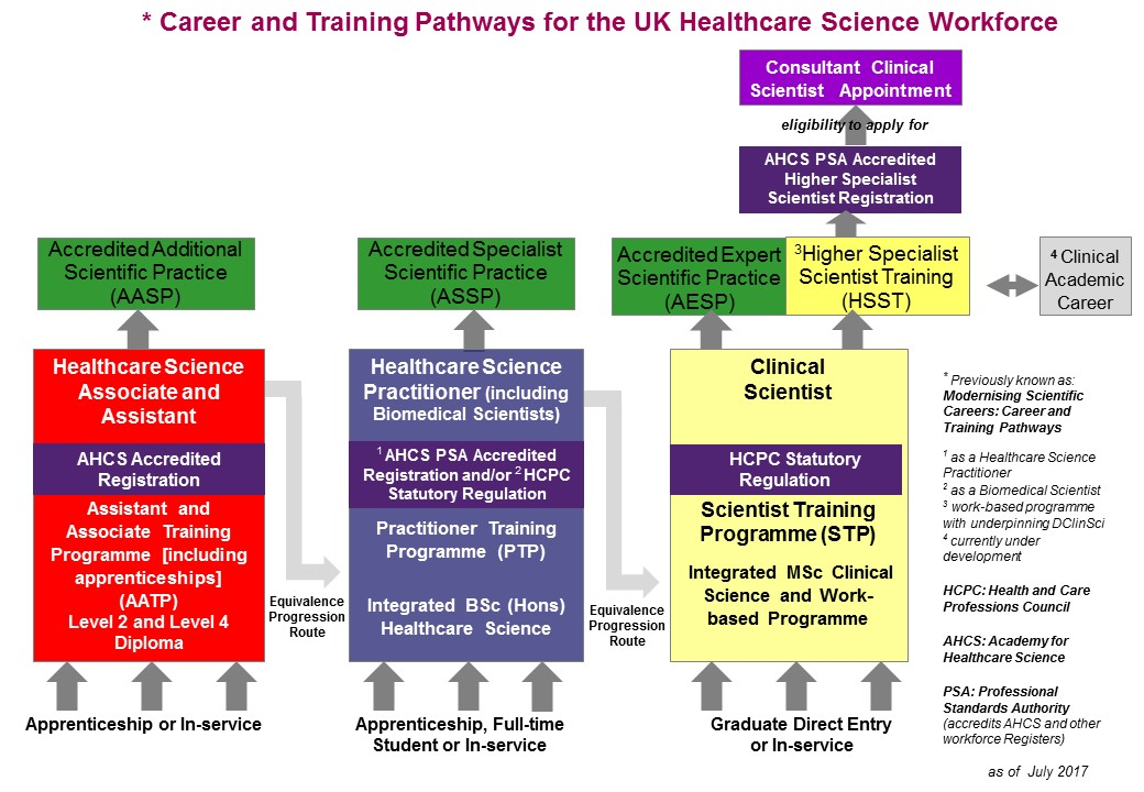 Career and training pathways